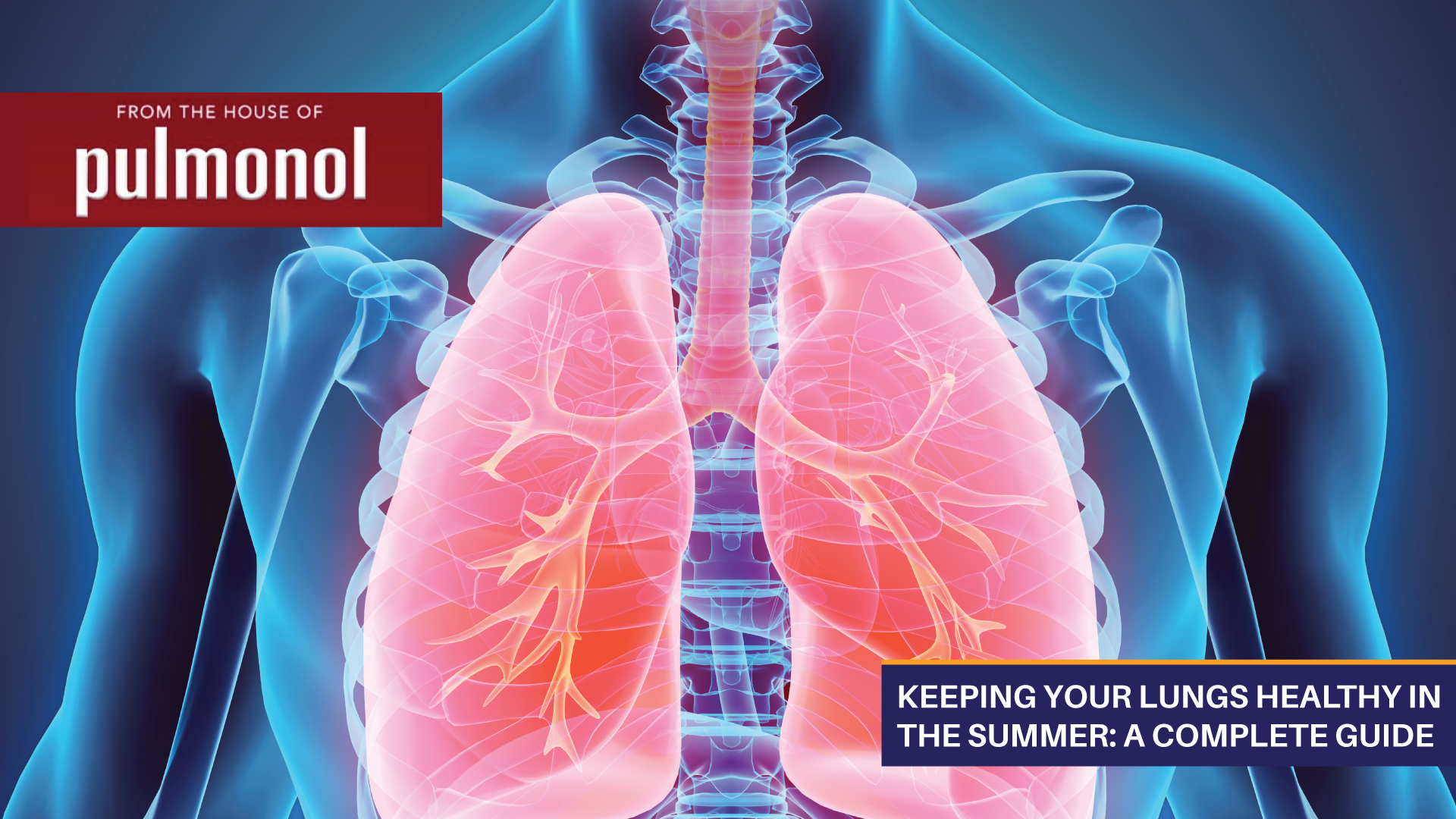 Keeping Your Lungs Healthy In The Summer: A Complete Guide